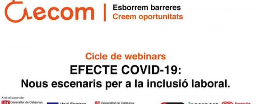 Imatge del cartell del webinar.