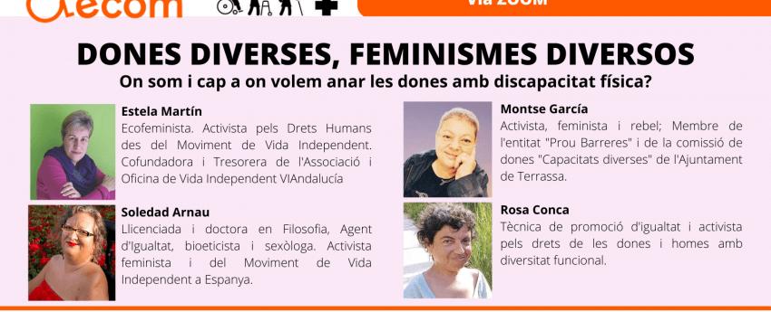 Cartell del webinar.
